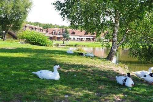 Relais du Silence L'Orée des Chênes : Hotel near Marcilly-en-Villette