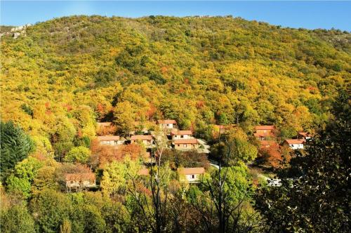 Villages de Gîtes des Châtaigniers du Lac : Guest accommodation near Saint-André-Capcèze