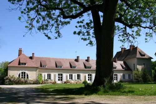 Château des Edelins : Bed and Breakfast near Saint-Didier-la-Forêt
