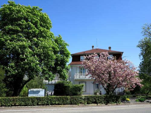La Villa Bel-Air : Apartment near Bischoffsheim