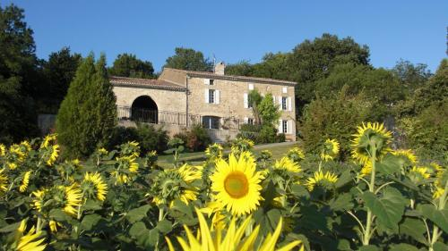 Chambres d'Hotes Domaine de la Capelle : Bed and Breakfast near Villespy