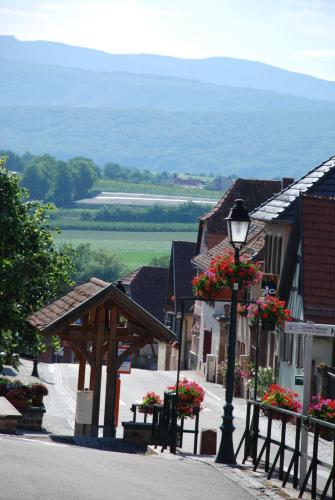 La Maison de Georges : Guest accommodation near Odratzheim