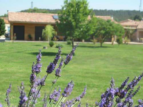 L'étape Provencale : Bed and Breakfast near Bouc-Bel-Air