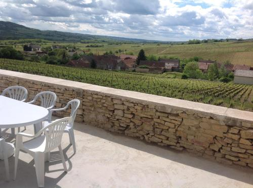 Au Pied des Vignes : Guest accommodation near Molinot