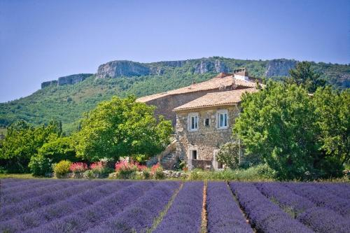 Chez Bacchus : Bed and Breakfast near Saint-Remèze