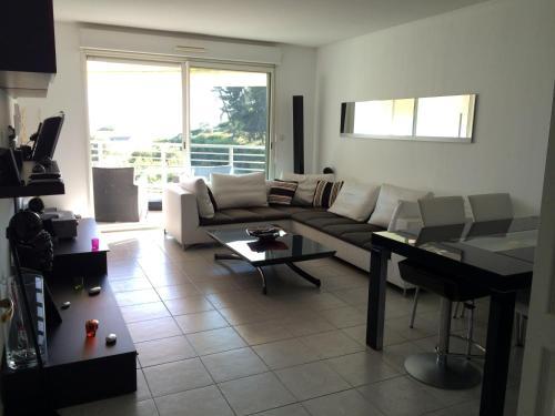 Appartement T2 Standing : Apartment near Saint-Laurent-du-Var
