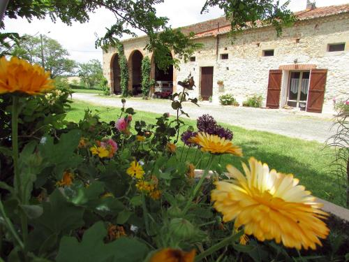 En Pascot : Guest accommodation near Montclar-Lauragais