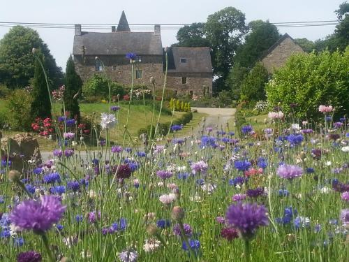 Manoir de la Branche : Bed and Breakfast near Saint-Georges-de-Reintembault