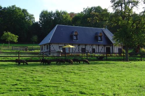 Le Champ des Possibles : Bed and Breakfast near Le Mesnil-Guillaume