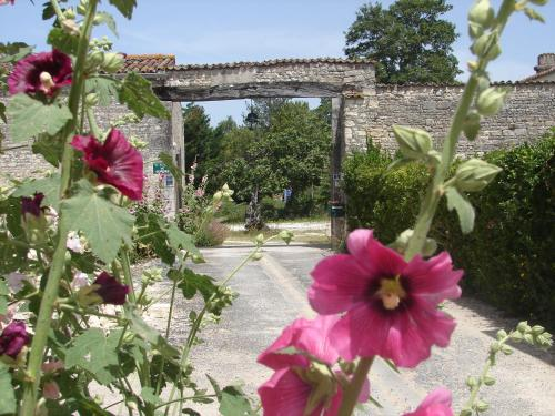 La Collegiale : Guest accommodation near Dompierre-sur-Mer