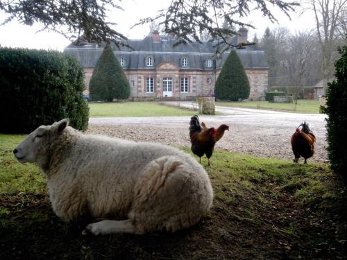 La Pommeraie : Guest accommodation near Grisy-Suisnes