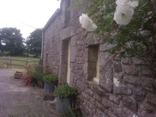 La Bretonne : Guest accommodation near Béganne