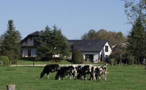 La Noue Aubain : Bed and Breakfast near Montcourt