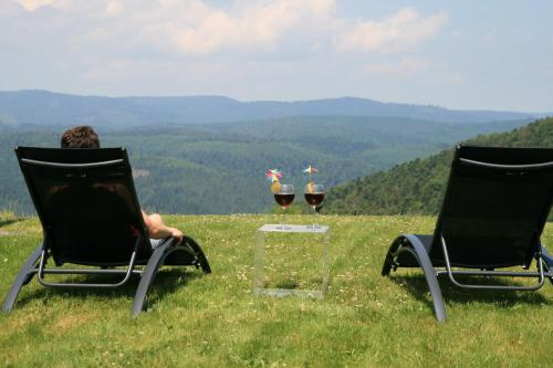 Aux Roches des Fées : Bed and Breakfast near Rothau