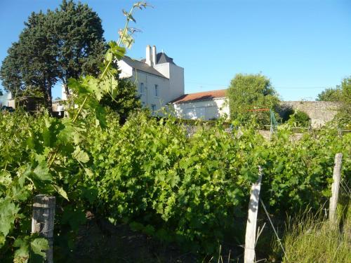 Tout Lui Faut : Guest accommodation near Saint-Laurent-du-Mottay