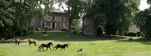 Domaine La Bonne Etoile : Bed and Breakfast near Bougé-Chambalud