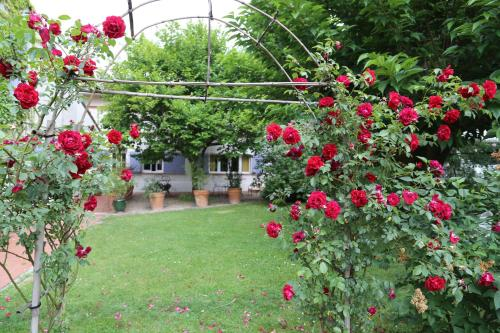 Les Esquirols : Bed and Breakfast near Mons