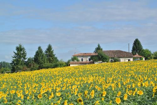 Chez Sarrazin : Guest accommodation near Montboyer