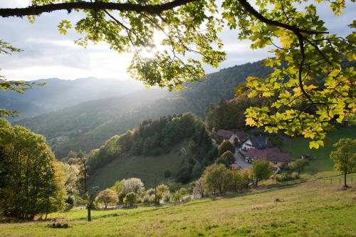Auberge Du Mehrbachel : Hotel near Ranspach