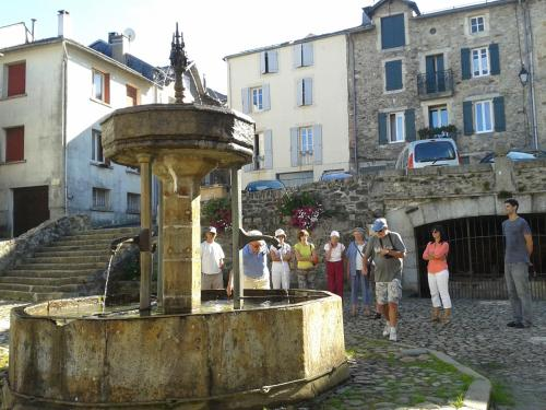 Holiday home coeur de Lacaune Tarn : Guest accommodation near Moulin-Mage