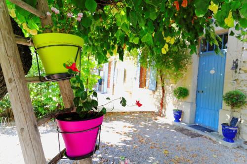 Les Tilleuls d'Elisée : Bed and Breakfast near Vaison-la-Romaine