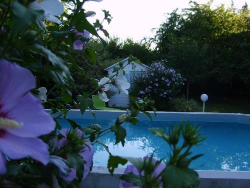 La Ferme de Thoudiere : Hotel near Bizonnes