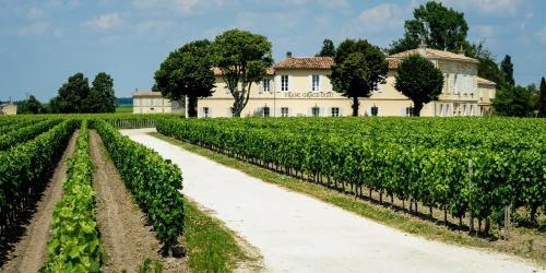 Château Franc Grâce-Dieu : Guest accommodation near Les Artigues-de-Lussac