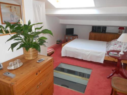 Maison de Pêcheur : Guest accommodation near Saint-Mandrier-sur-Mer