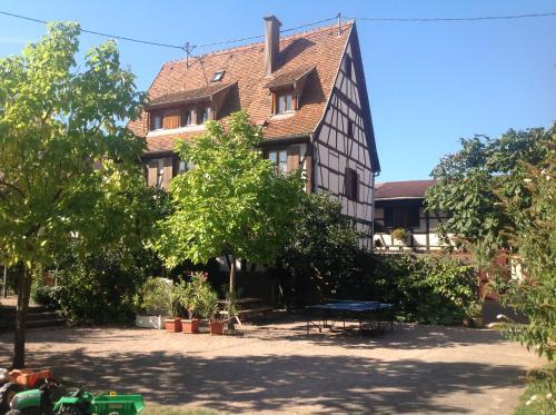 Gites la Cour Zaepffel : Apartment near Dambach-la-Ville