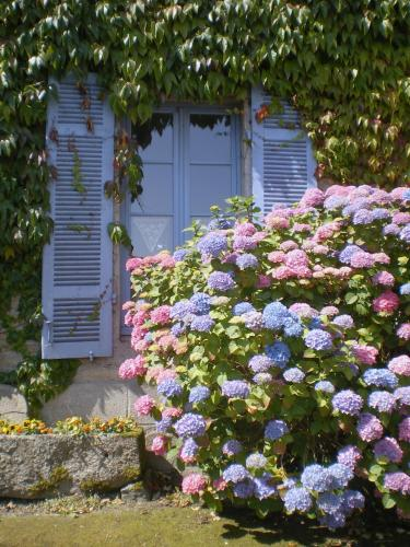 Une Chambre en Bretagne : Bed and Breakfast near Illifaut