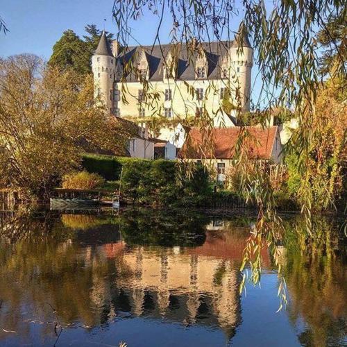 La Petite Salamandre : Guest accommodation near Selles-sur-Nahon