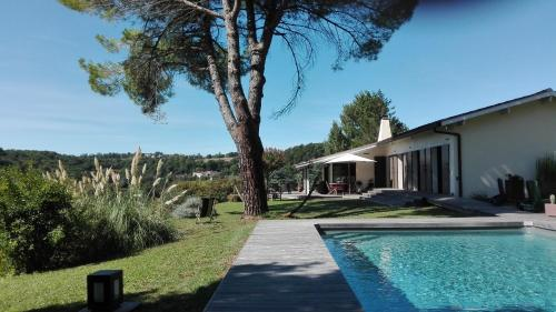 Kitties : Bed and Breakfast near Colayrac-Saint-Cirq