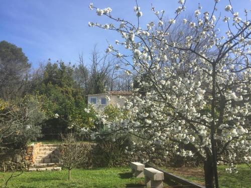 Maison Alegría : Guest accommodation near Vence