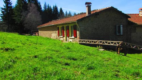 B&B Les Paddocks : Bed and Breakfast near Saint-Didier-sur-Rochefort