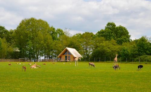 Les Lodges Du Reynou : Guest accommodation near Flavignac