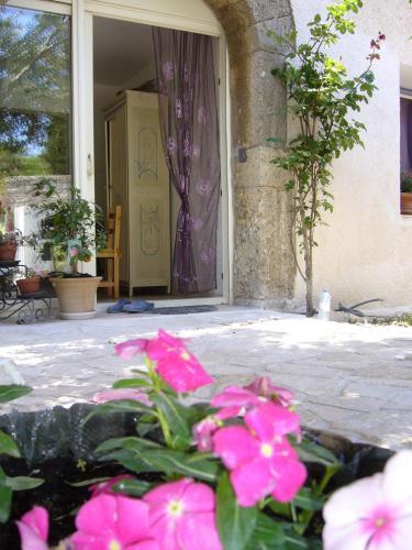 La Vigne Des Heures Claires : Bed and Breakfast near Saint-Marcel-sur-Aude