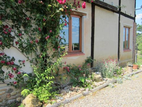 Belardine : Bed and Breakfast near Monguilhem