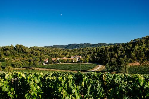 Domaine Calmel & Joseph : Guest accommodation near Fajac-en-Val