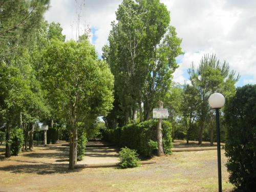 Camping Le Rebau : Guest accommodation near Saint-Thibéry