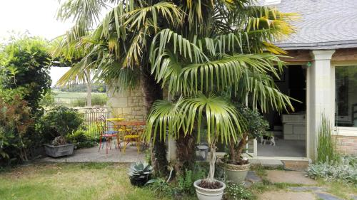La Motelle : Bed and Breakfast near Montreuil-Bellay