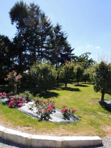 Les Stiers : Bed and Breakfast near Châteaubourg
