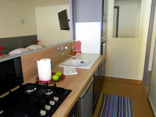 Themis 1 : Apartment near Cannes