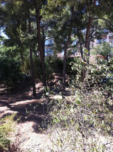 Appartement Cassis : Apartment near Cassis