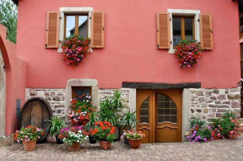 Aux Grains Nobles : Apartment near Hattstatt