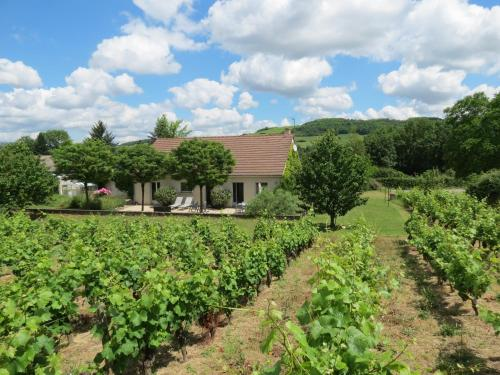 Les Vignes de Paris : Guest accommodation near Saint-Jean-de-Trézy
