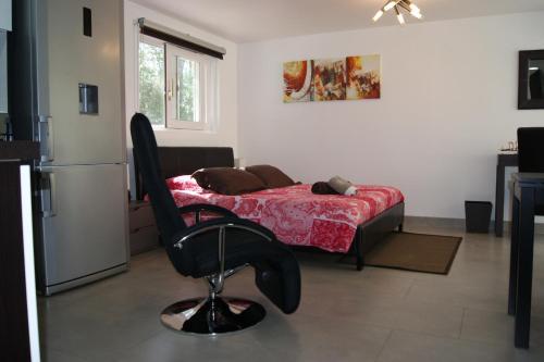 Studio d'hôtes Villa Castelnau : Apartment near Les Matelles