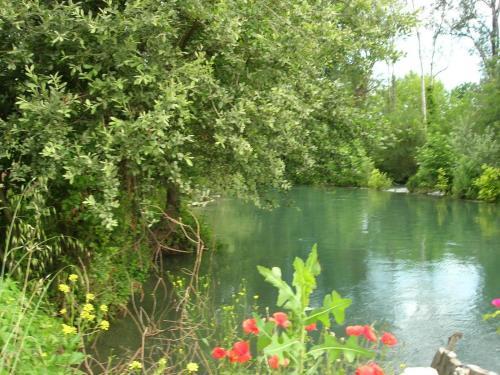 Domaine des Petits Cancets : Guest accommodation near Velleron