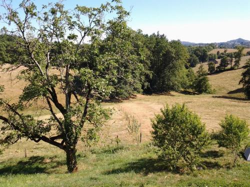 La Forêt du Burg : Guest accommodation near Chabrignac