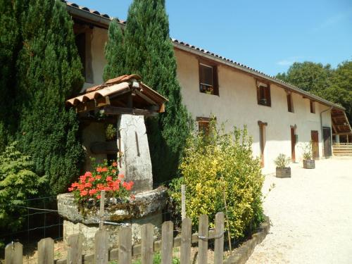 le paradis vert : Bed and Breakfast near Pirajoux