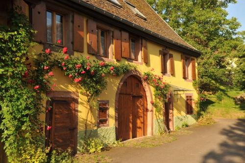 Couleurs Nature : Bed and Breakfast near Dieffenbach-au-Val